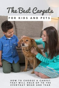 best carpets for kids and pets