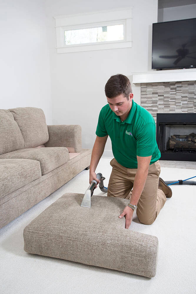 furniture cleaner working on a couch cushion