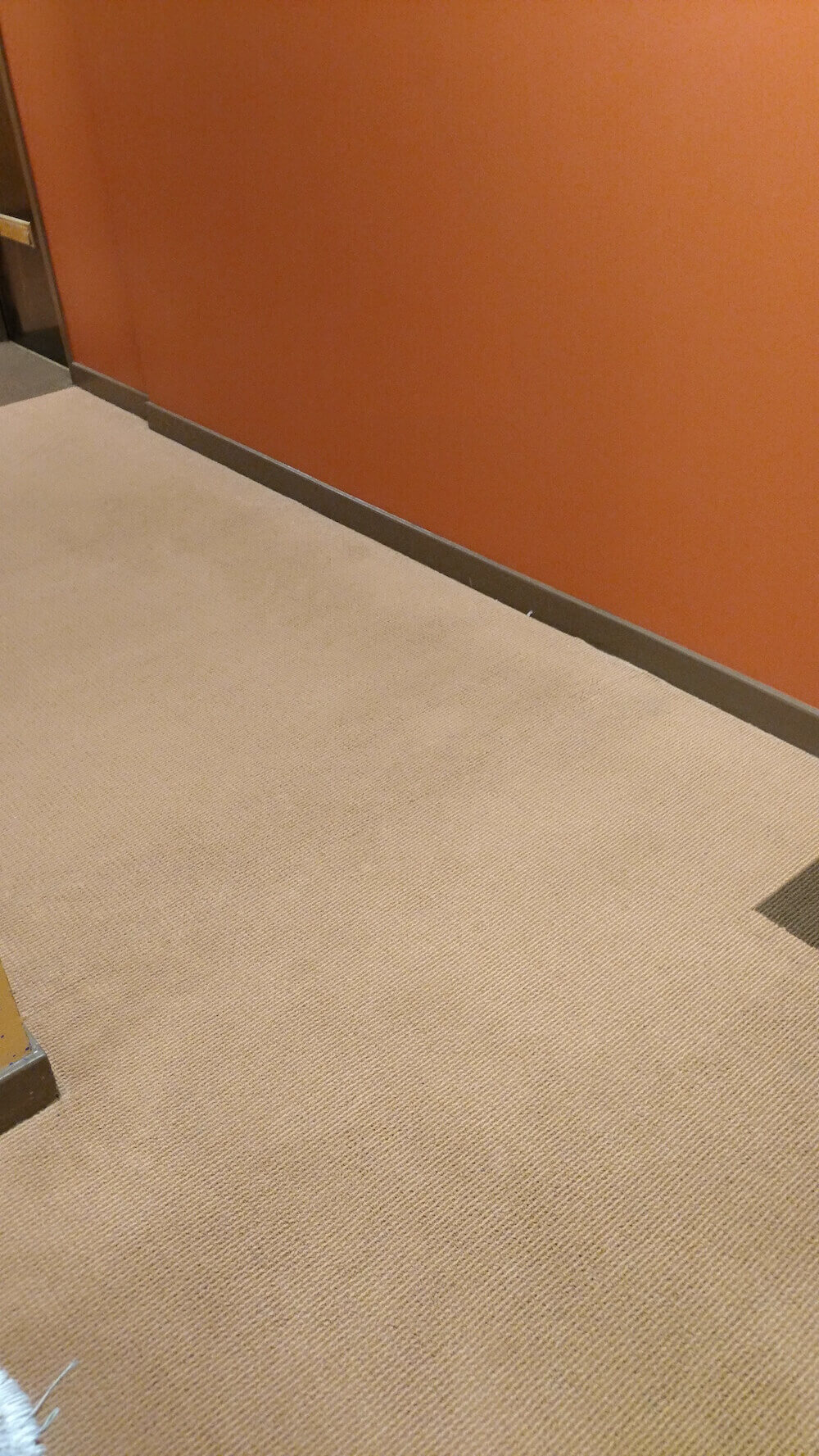 clean office carpet in san francisco