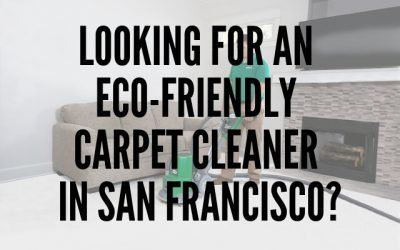 Looking for an Eco-Friendly Carpet Cleaner in San Francisco?