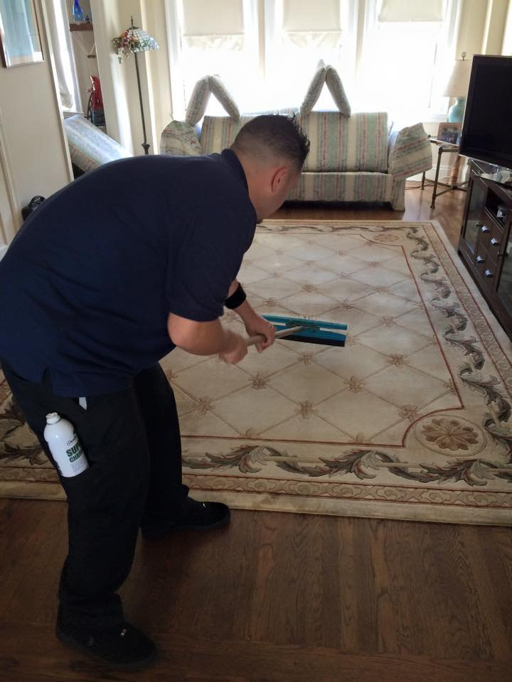 Chem-Dry tech cleaning a rug in San Francisco