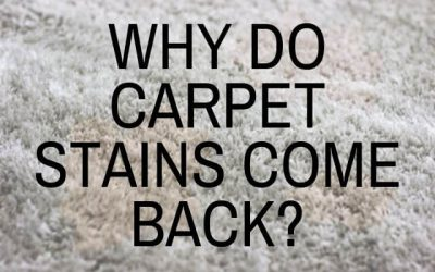 Why Do Carpet Stains Come Back?