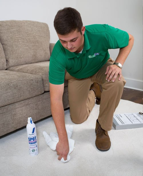 carpet cleaning hunters point