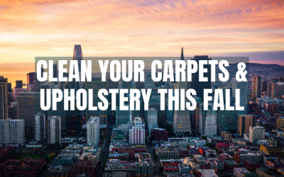 Fall Carpet & Upholstery Cleaning