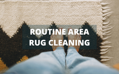 Routine Area Rug Cleaning